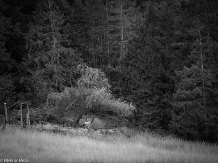 untitled shoot-065
